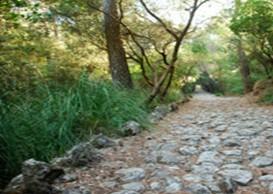 Camí des Correu (Esporles/Banyalbufar)